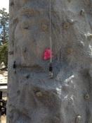 Tahoe.Ovation Bear 5